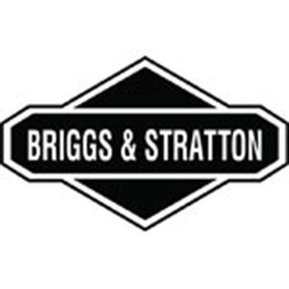 Picture for manufacturer Briggs & Stratton